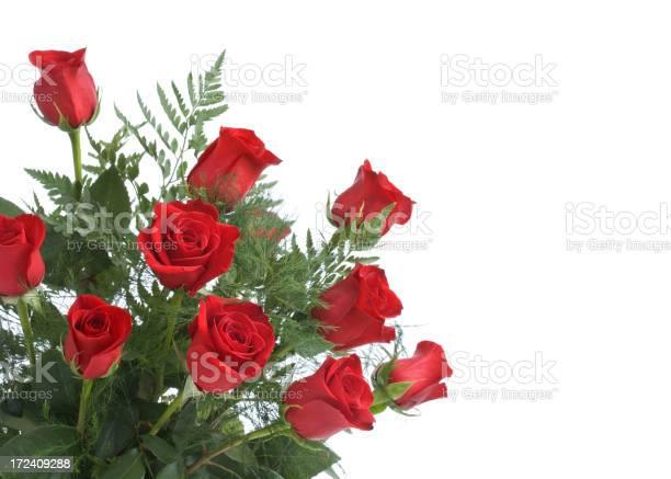 Red roses picture id172409288?b=1&k=6&m=172409288&s=612x612&h=xvdp9i93860ruxwmnfwtlywstfsvliukejmlige1fuk=