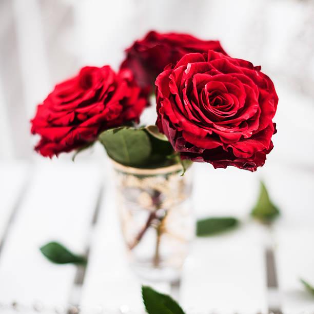 Red roses picture id174844313?b=1&k=6&m=174844313&s=612x612&w=0&h=bkixdfhqgzq78twgvpo3tlg0k1uy7xvkf3wsyxykhrk=