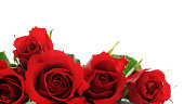 istock red roses 462275297