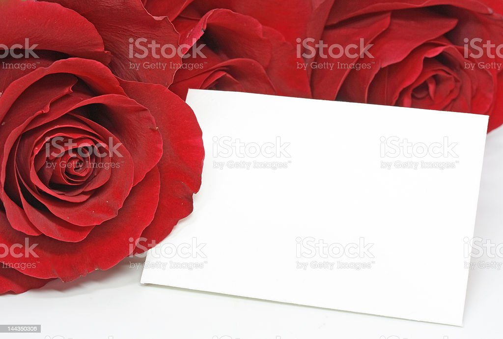 red roses with a blank note royalty-free stock photo