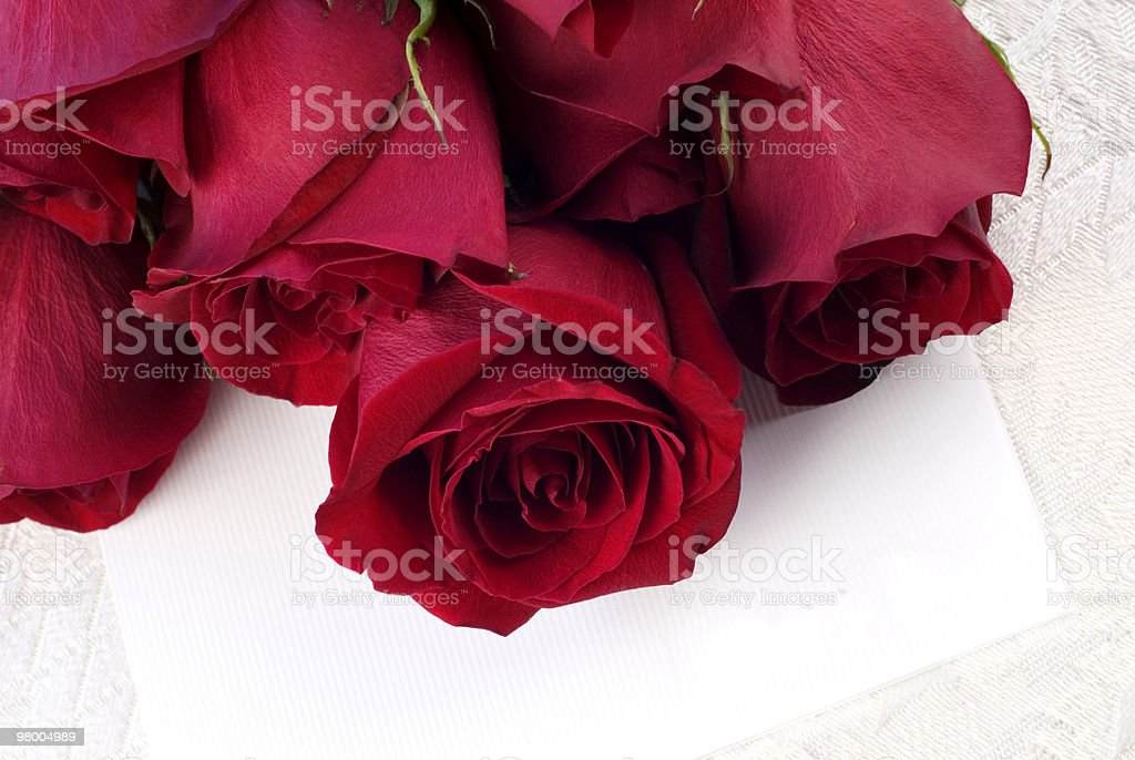 Red Roses with Blank Card royalty-free stock photo