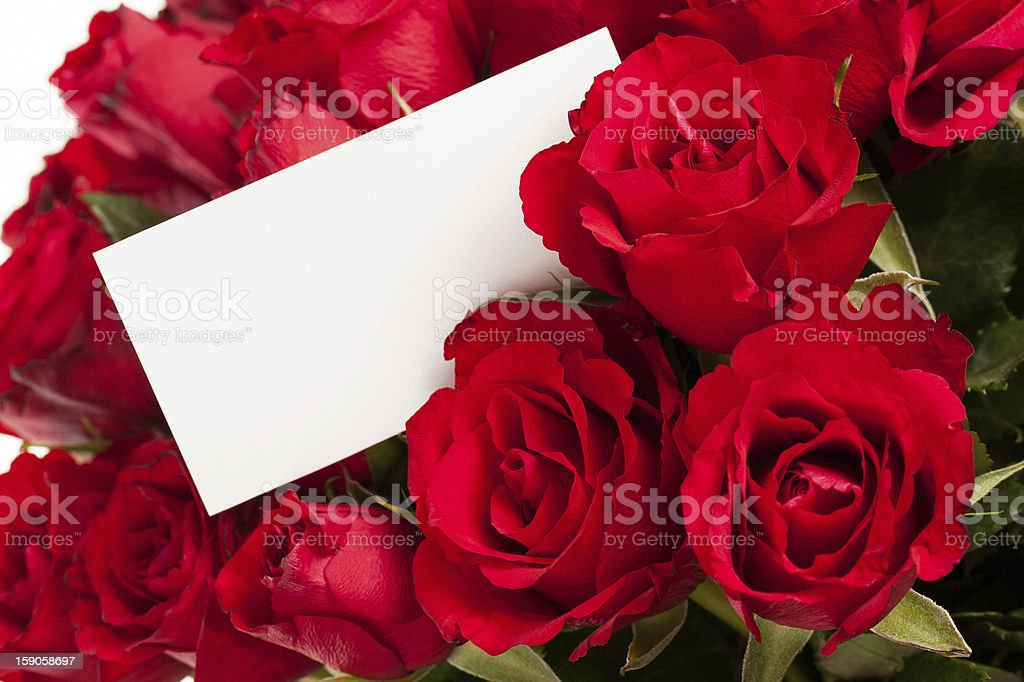 Red roses with gift tag. royalty-free stock photo