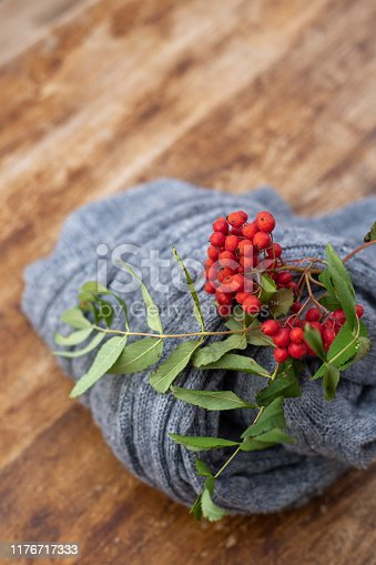 Red rowan on the wooden background with woolen knitted