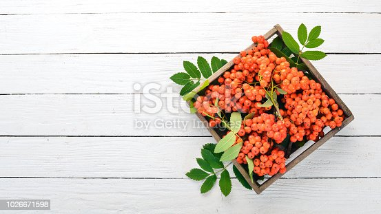istock Red rowanberry in a wooden box. On a white wooden background. Top view. Free space for your text. 1026671598