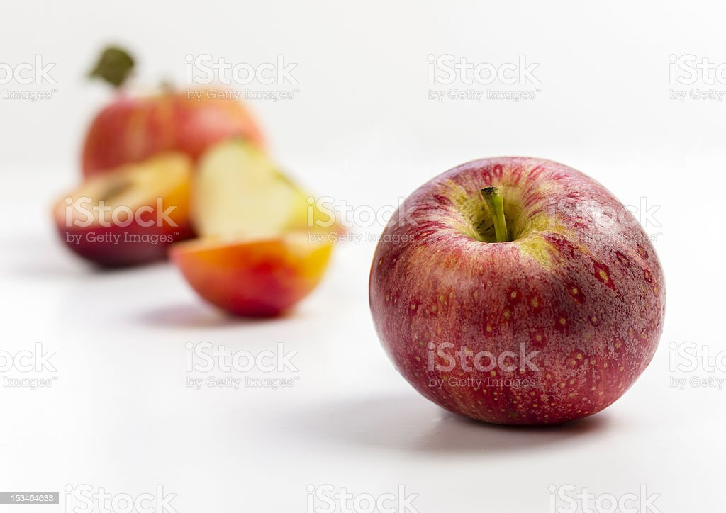 Red royal gala apple royalty-free stock photo