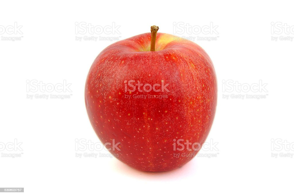 Red Royal Gala apple stock photo