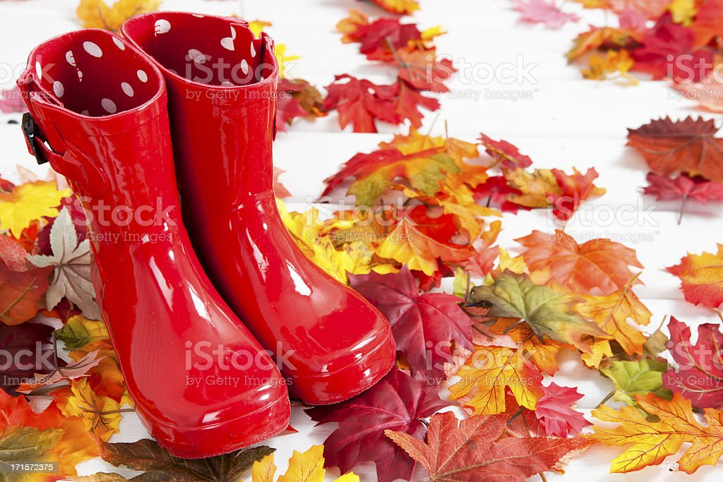 Red rubber boots on autumn leaves royalty-free stock photo