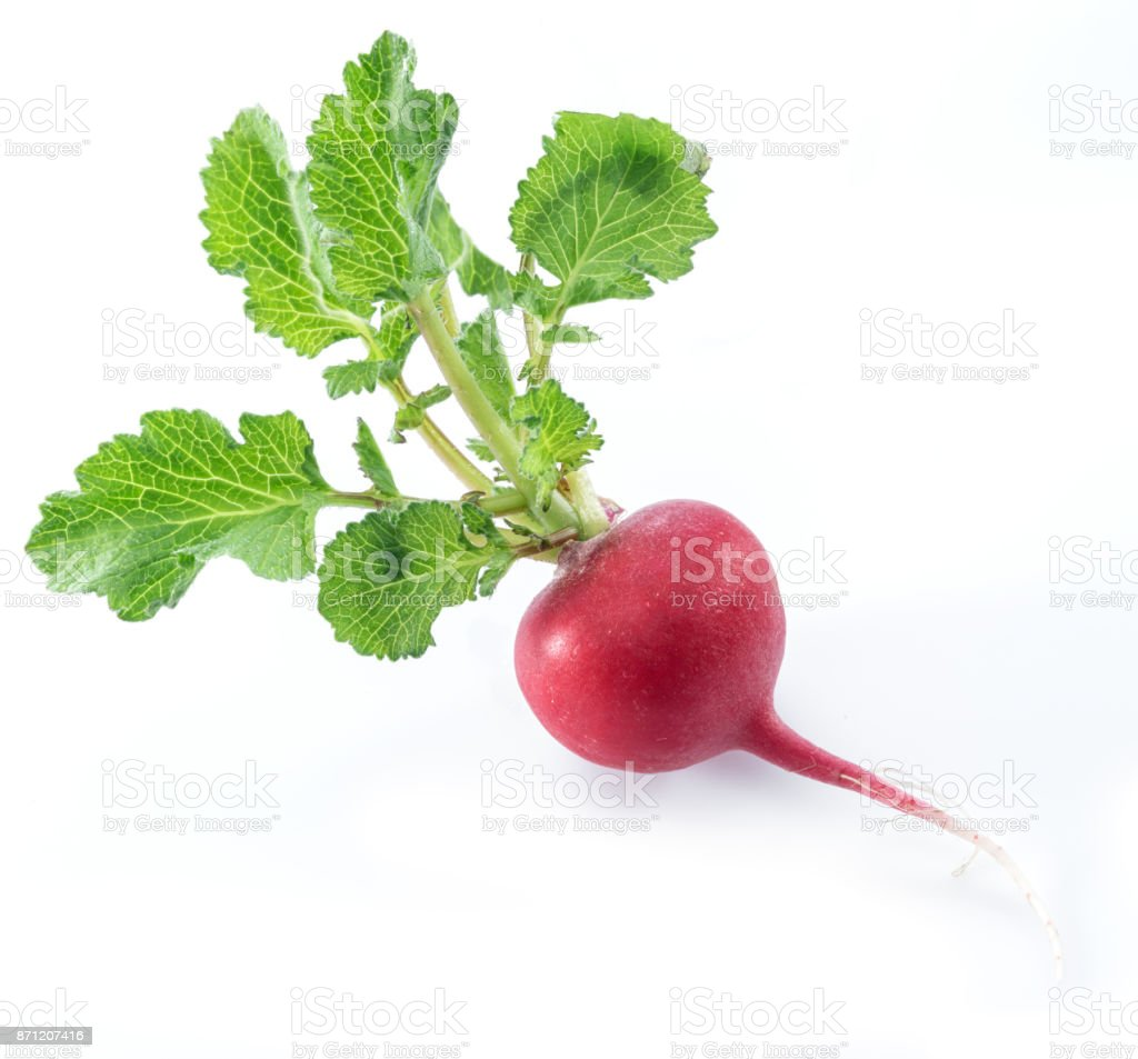 Red salad redish with leaves. stock photo
