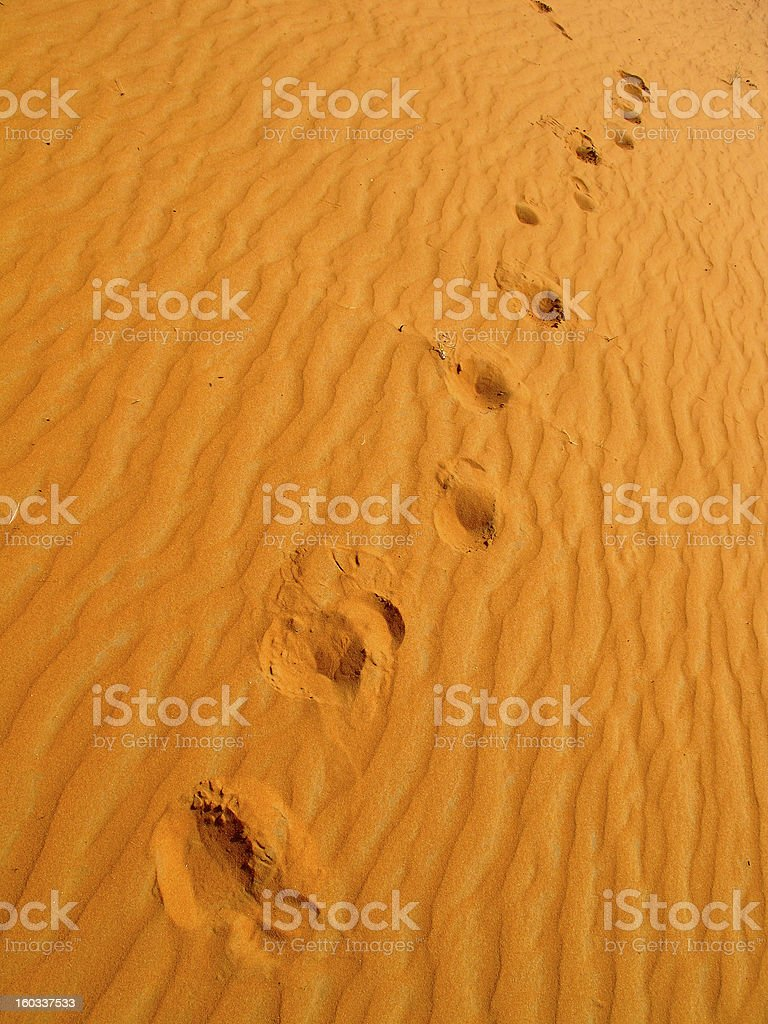 Red sand desert royalty-free stock photo