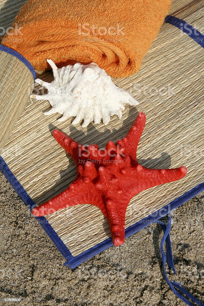 Red sea star series royaltyfri bildbanksbilder