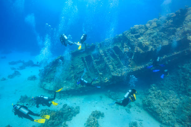red sea wreck diving - shipwreck stock pictures, royalty-free photos & images