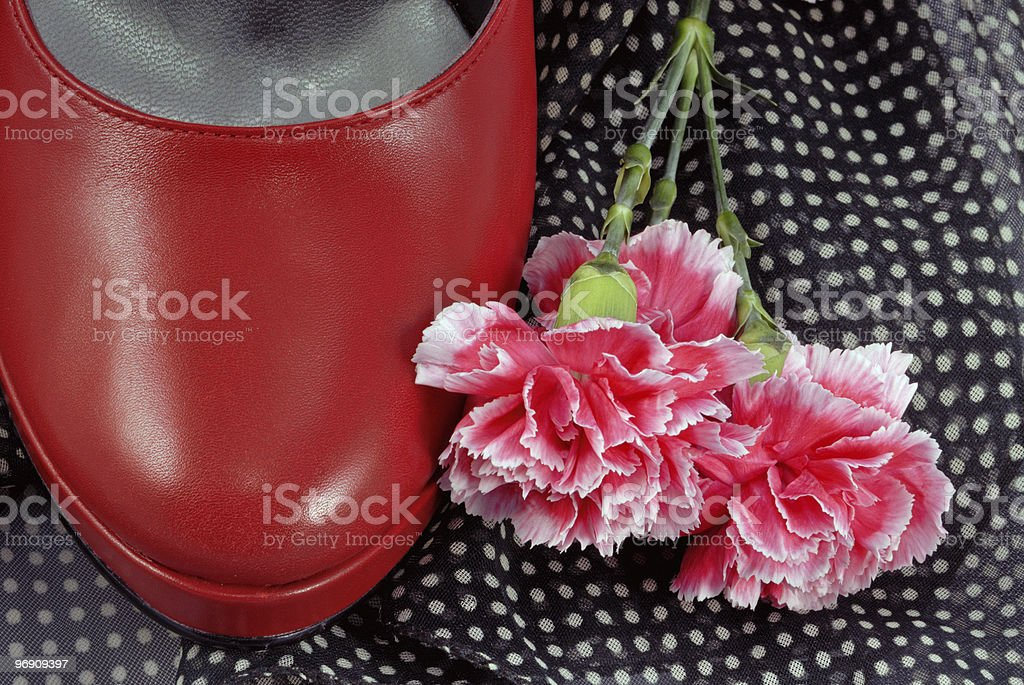 Red Shoe and Flower royalty-free stock photo