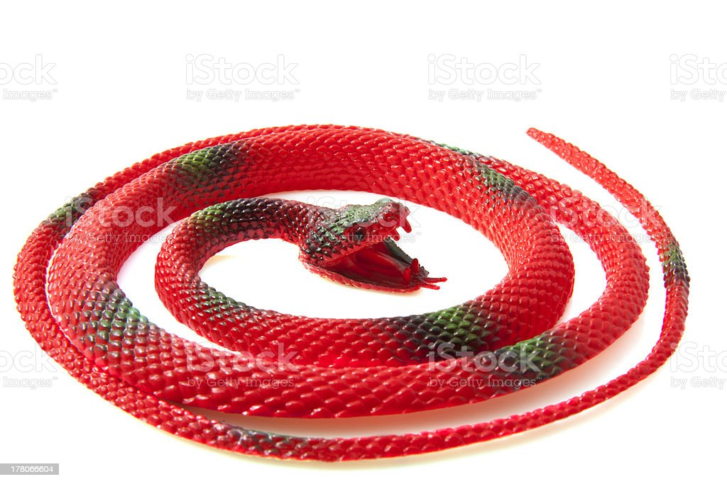 Red snake royalty-free stock photo