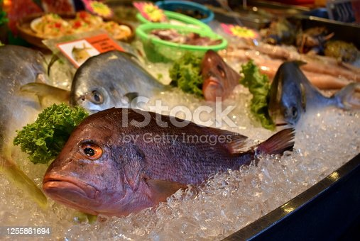 Red snapper on sale at a seafood restaurant
