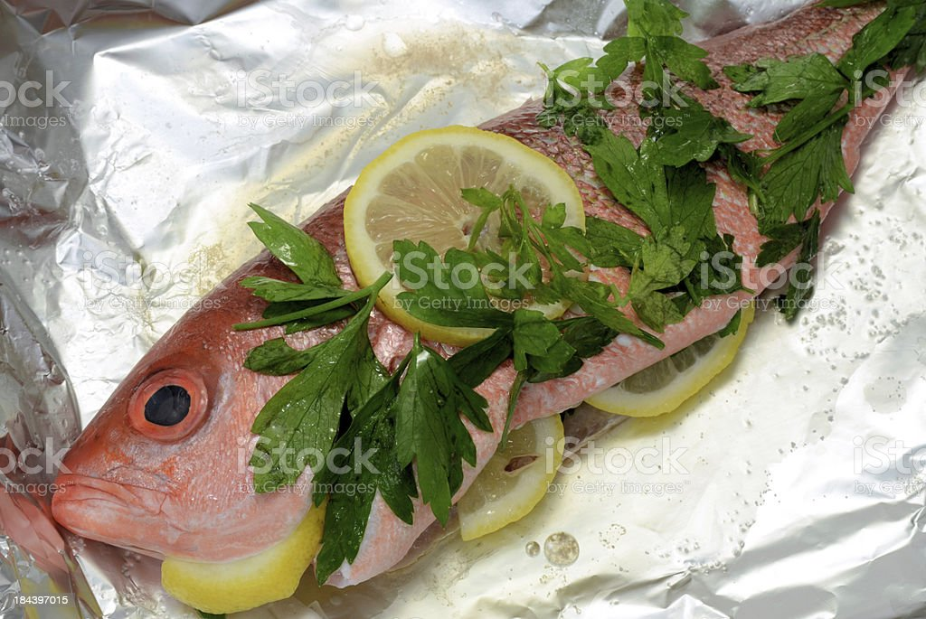 Red Snapper royalty-free stock photo