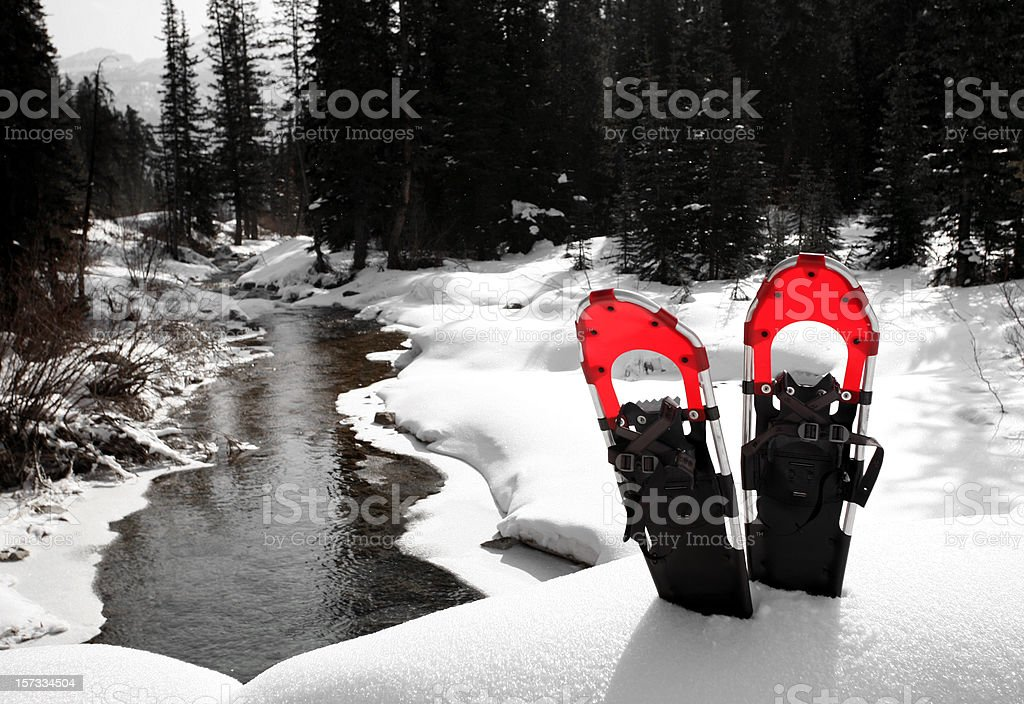 Red Snowshoes stock photo