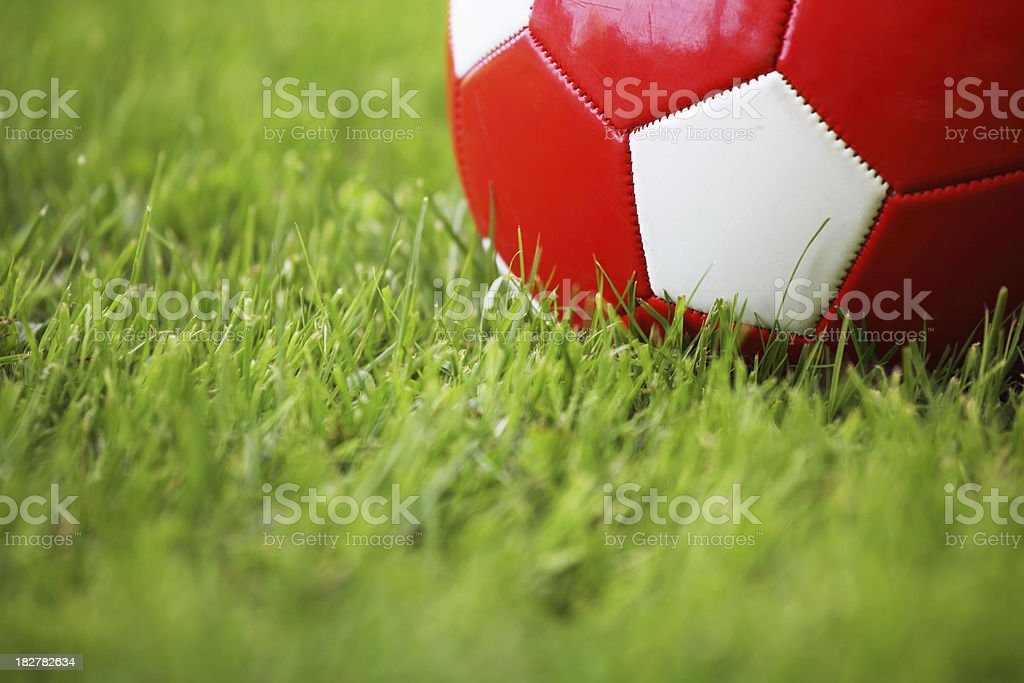 Red soccer ball in grass royalty-free stock photo