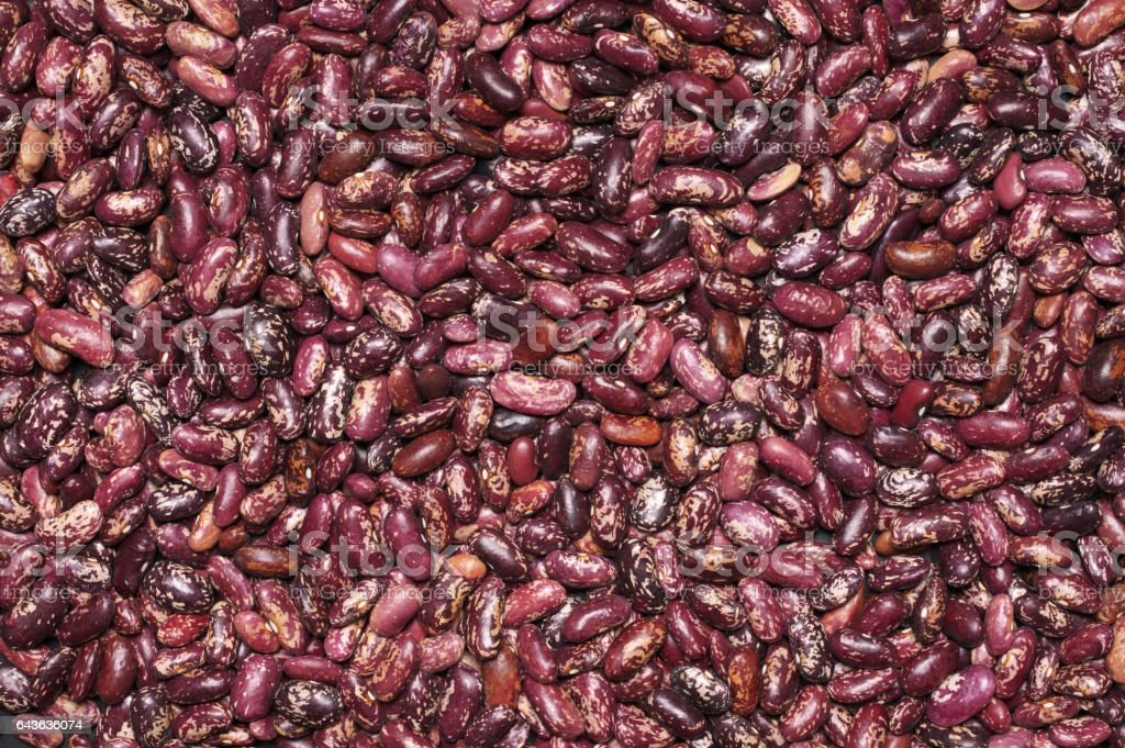 Red Speckled Kidney Beans Stock Photo Download Image Now Istock