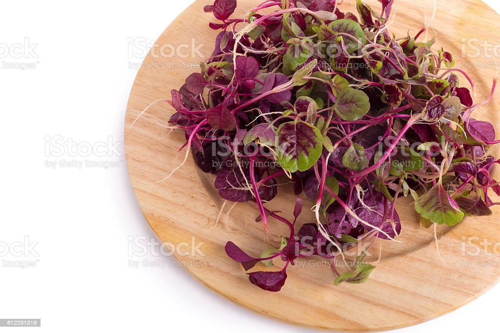 red spinach isolated on white background. stock photo