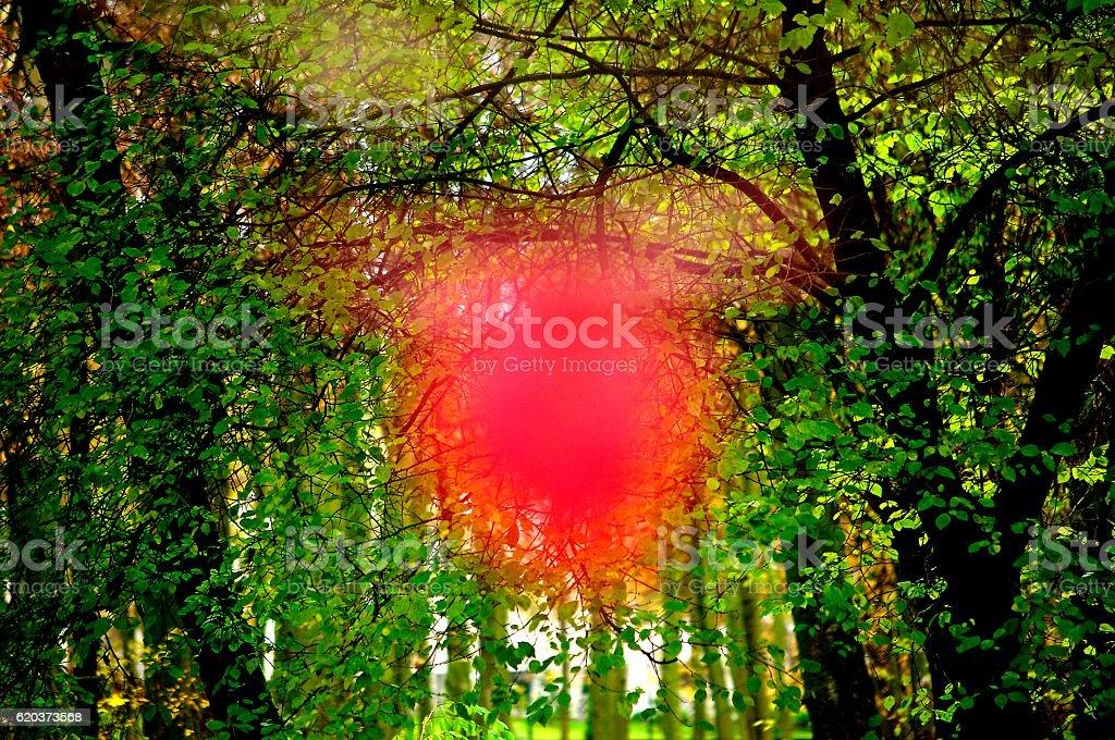 Czerwona Plama zbiór zdjęć royalty-free