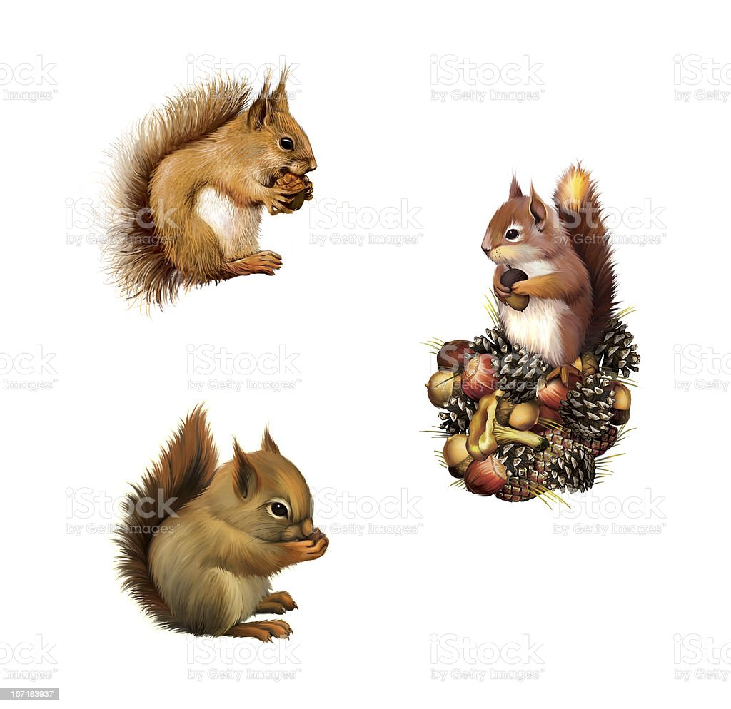 Red squirrel with cane royalty-free stock photo
