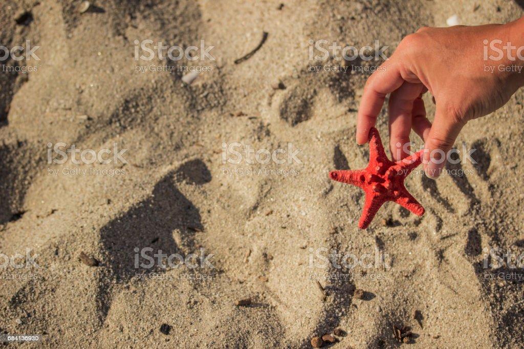 Red starfish in hand royalty free stockfoto