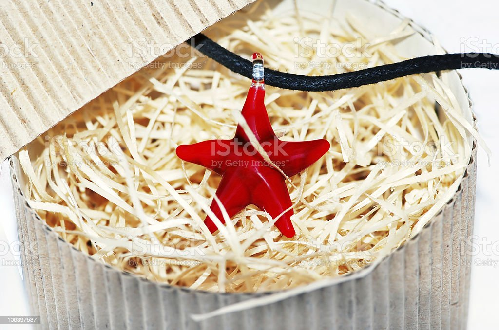 red starfish necklace royalty-free stock photo
