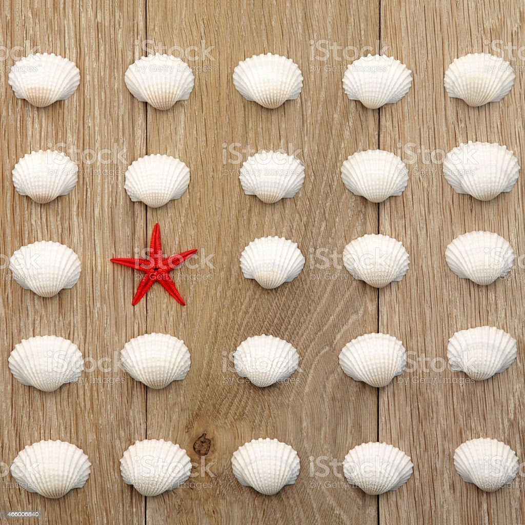 Red starfish standing out against a collection of shells stock photo