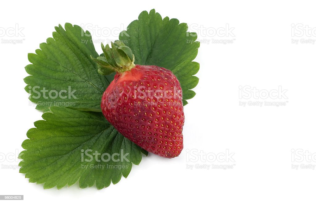 Red Strawberry with Leaves royalty free stockfoto