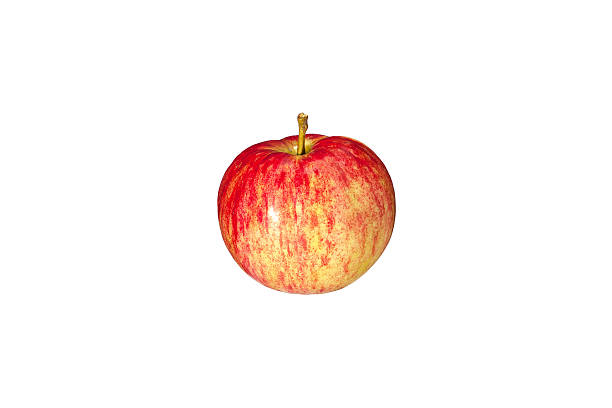 Red striped apple close up on a white background