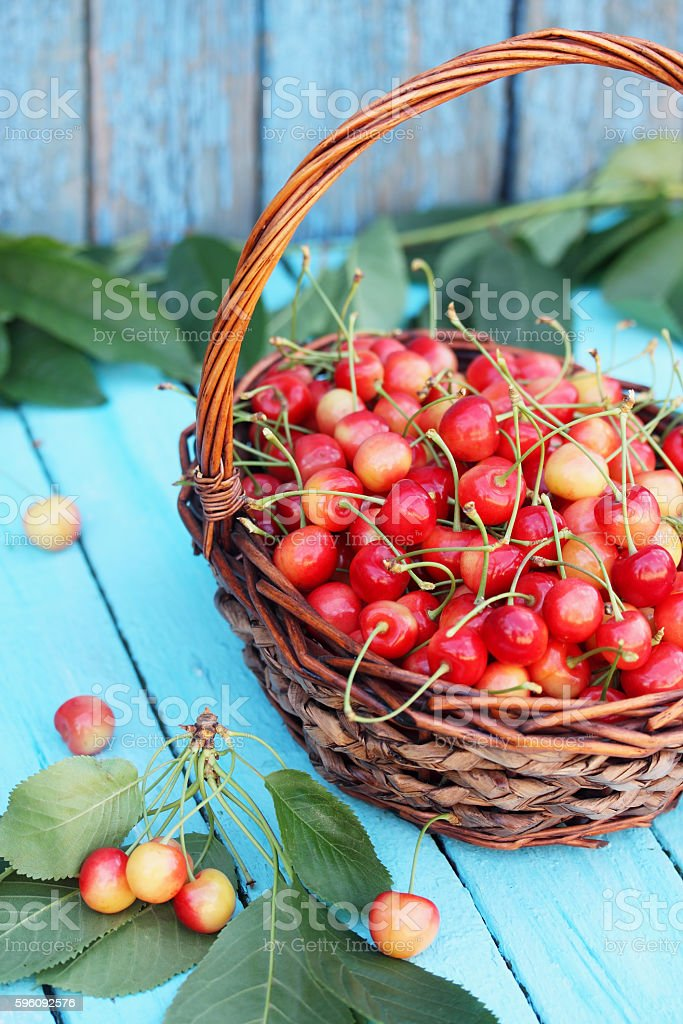 red sweet cherries royalty-free stock photo