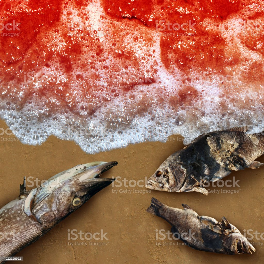 Red Tide Concept stock photo