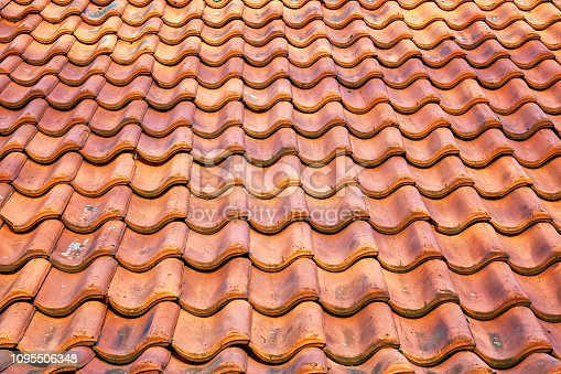 Red tile roof as a background.