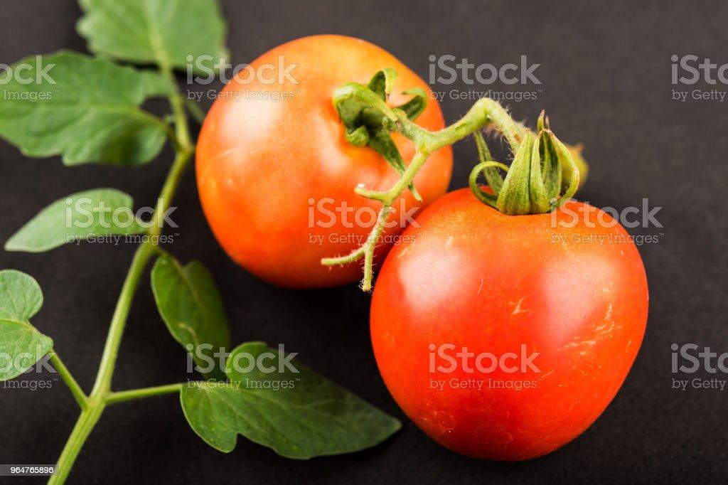 Red Tomato on black background royalty-free stock photo