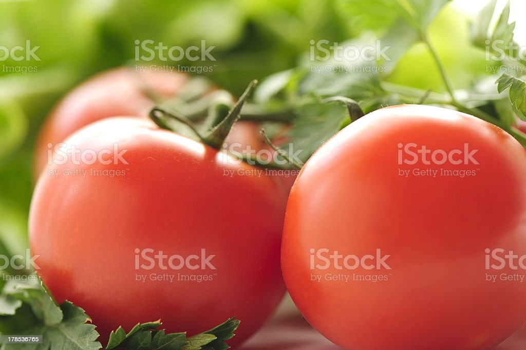 Red tomatoes and parsley royalty-free stock photo