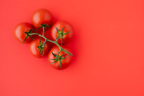 Red Tomatoes Close Up. Fresh Organic Tomatoes on Red Background, Directly from Above with Copy Space. Group of Objects, Healthy Eating, Healthy Lifestyle, Product stock photo
