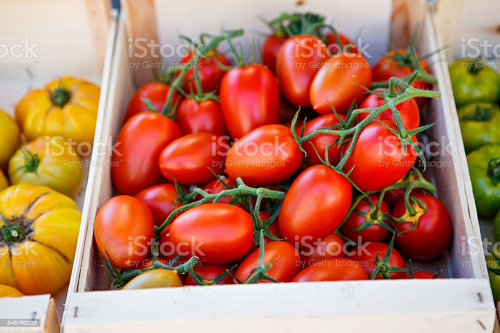 red tomatoes from farmers market in Provence stock photo