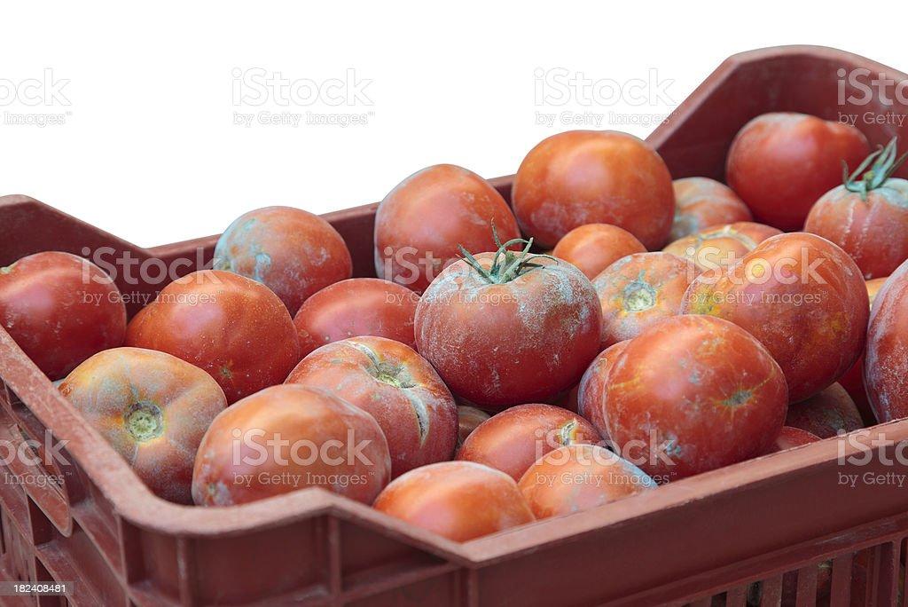 Rote Tomaten in Holzkiste Lizenzfreies stock-foto