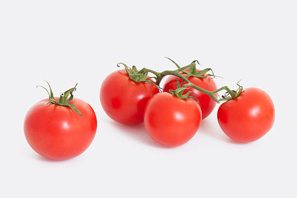 Red tomatoes on white background stock photo
