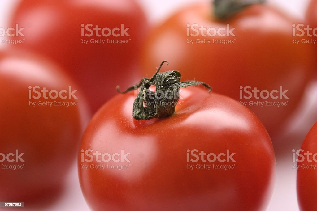 Tomates rouge photo libre de droits