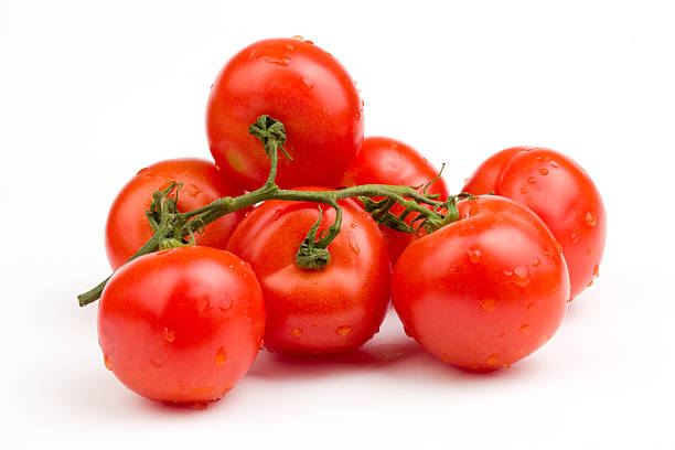 Red tomatoes still on the vine stock photo