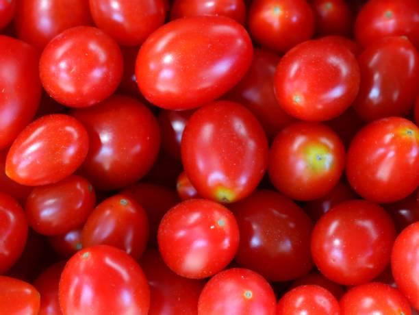 Rote Tomaten, Cherry-Tomaten auf einem Markt – Foto