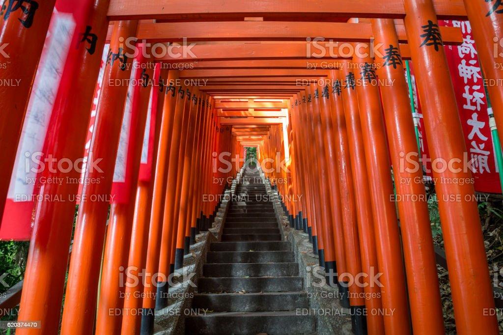 Red Torii Gate foto de stock royalty-free