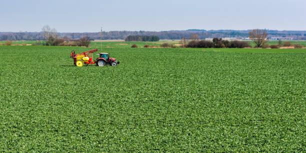 İlkbaharda kolza yaprağı püskürttükten sonra tarladan sarı bir püskürtücü ile kırmızı bir traktör. stok fotoğrafı