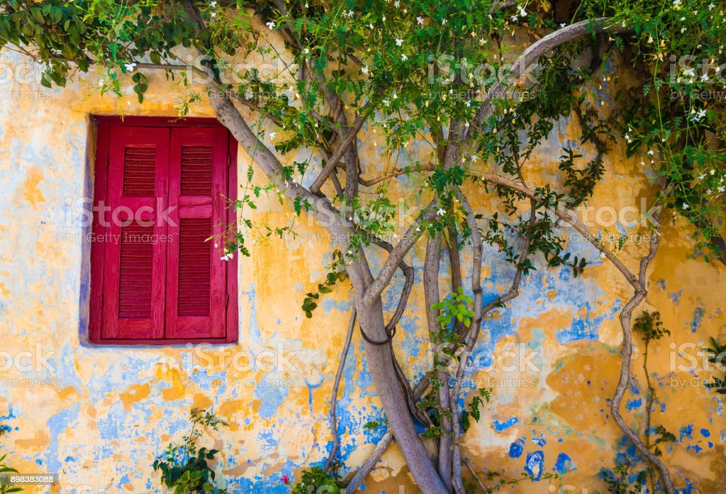 A red traditional window next to a jasmin in Plaka stock photo