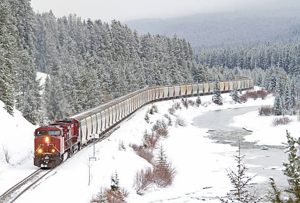 red train speeding through rocky mountains - godståg bildbanksfoton och bilder