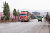 Red truck and tractor driving on the asphalt road in rural landscape of Dongchuan, South China. Beautiful roadside, peach cherry in full bloom. Spring season. Transportation concept.