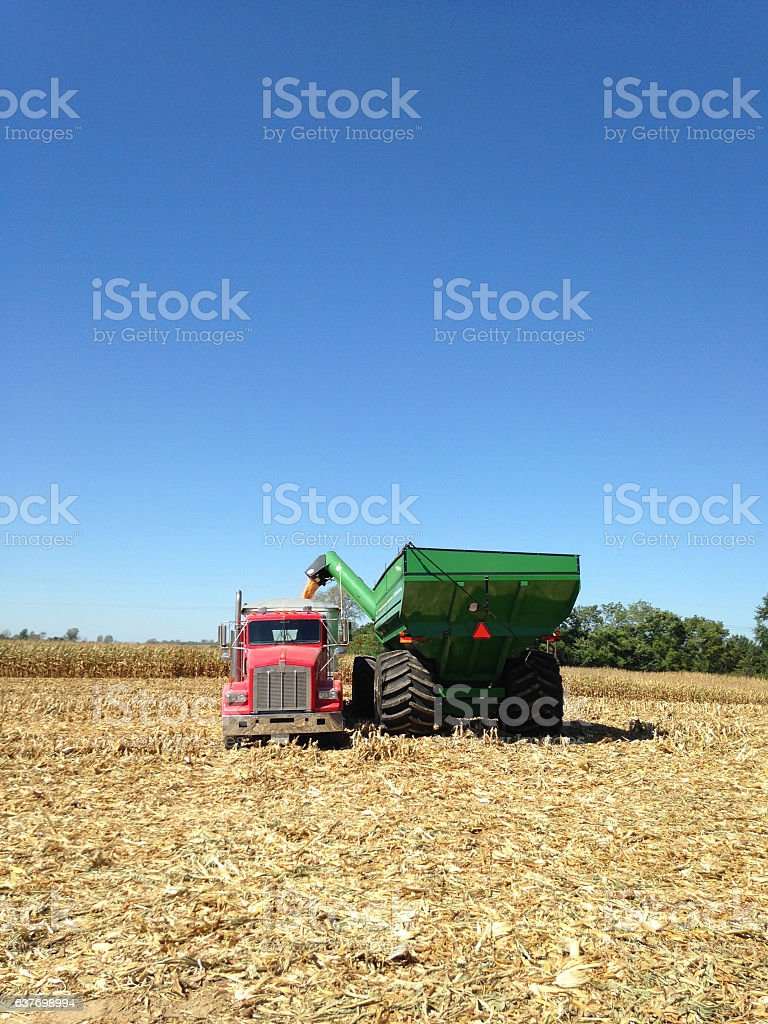 Red Truck Green Wagon Corn Harvest stock photo