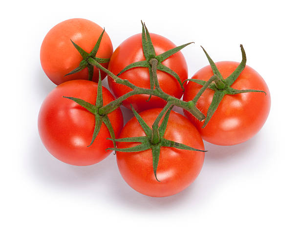 Red Truss Tomatoes stock photo