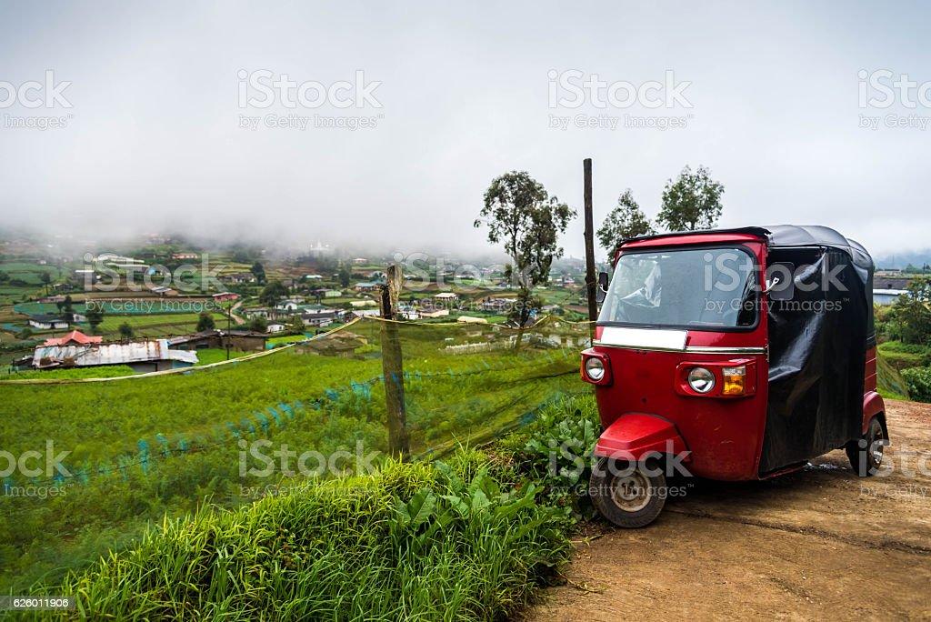 Red tuktuk on a vegetable plantation stock photo